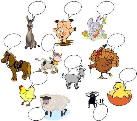 Animales Viviparos Dibujo Imagui